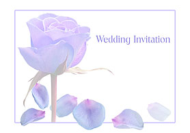 Wedding save the date 4vm42