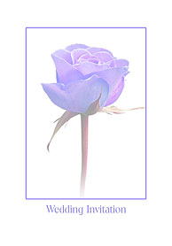 Wedding invitation card 4vi38